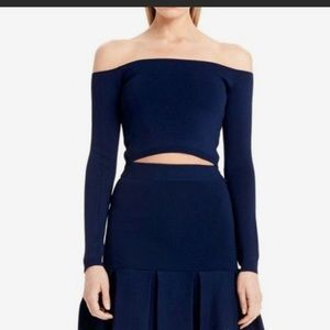 Torn by Ronny Kobo Navy Blue Crop Top